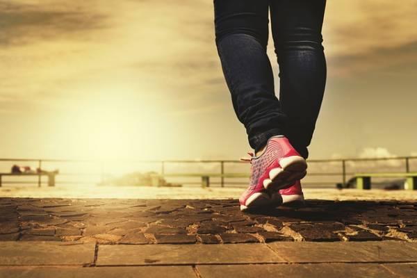 נעלי ספורט איכותיות