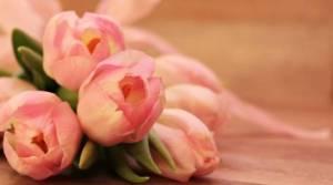 מתי לשלוח פרחים