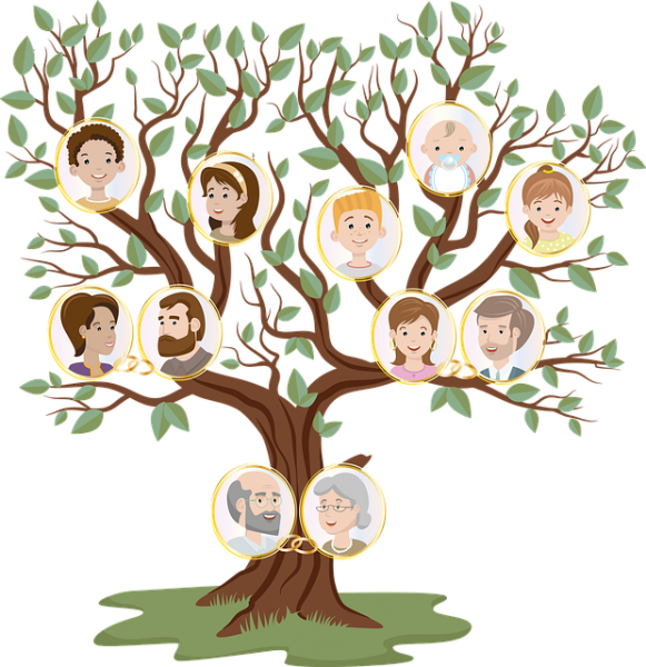 עץ משפחתי מעוצב