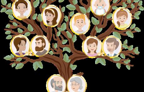 עץ משפחתי מעוצב – מתנה מרגשת עם ערך מוסף