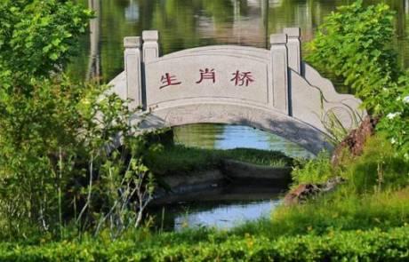 מתי כדאי להזמין שירותי תרגום לסינית?