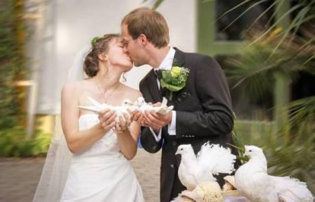 איך בוחרים צלם חתונות